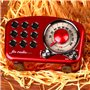 Retro Design Bluetooth Speaker with FM-Radio Fuyin - 7