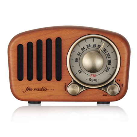 Mini Retro Design Bluetooth-luidspreker en FM-radio R919-A/C Fuyin - 1
