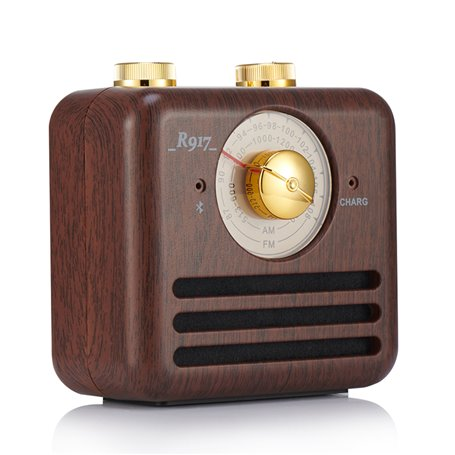 Mini Haut-Parleur Bluetooth Design Rétro et Radio-FM R917-B Fuyin - 1